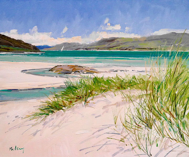 RK0172-BEACH-GRASS-at-MORAR